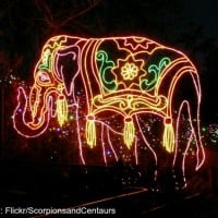 Lights at the Denver Zoo (Flickr/ScorpionsandCentaurs)