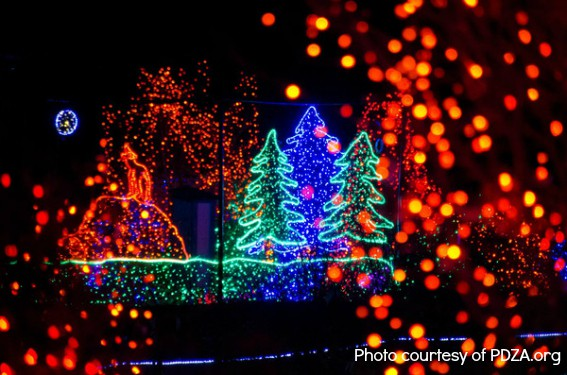 8 Fun Family Holiday Events In Seattle A Guide To