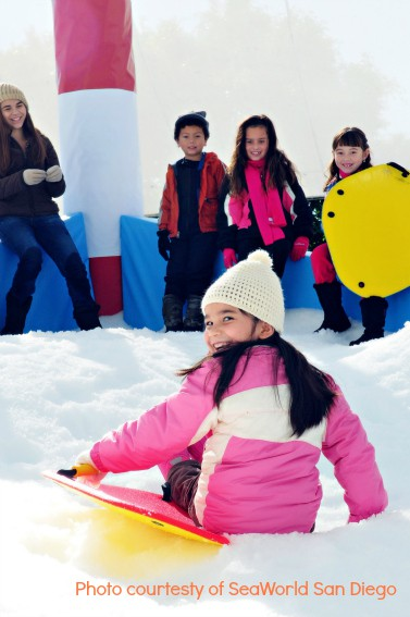 SnowWorld at SeaWorld San Diego Holiday Events