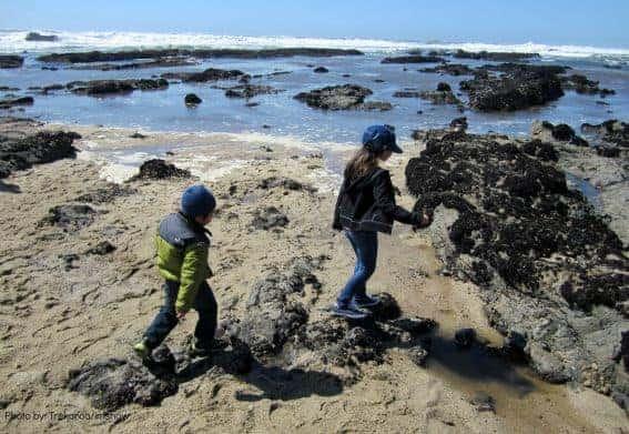 Half Moon Bay, California at Fitzgerald Marine Reserve half moon bay with kids