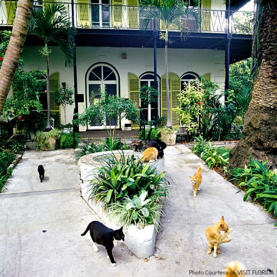 Hemingway Home, FL Photo Courtesy of: VISIT FLORIDA