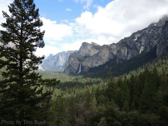 Three National Parks in Three Days:  Yosemite  Photo by: Tina Buell