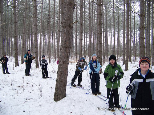 fun things to do in the snow: cross country skiing