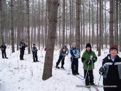 有趣的事情在雪地里做:越野滑雪