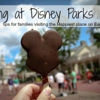 Dining at Disney Parks