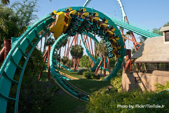 Top Ten Things To Do In Tampa Bay For Families Trekaroo