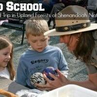 shenandoah national park road school
