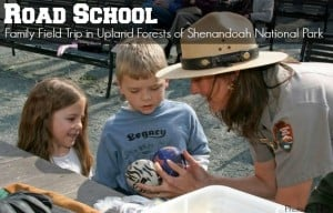 shenandoah national park road school