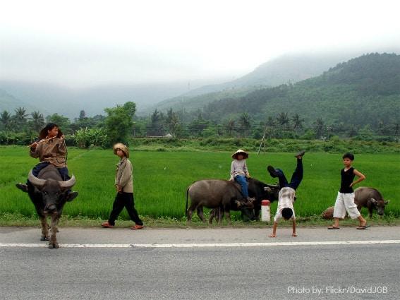 Kids international travel 3 Vietnam