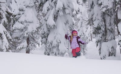 fun things to do in the snow: other great activities