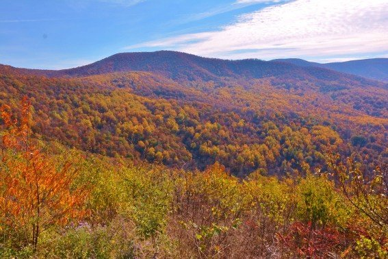 Top 10 things for families to do in Virginia: Shenandoah Fall Color North District